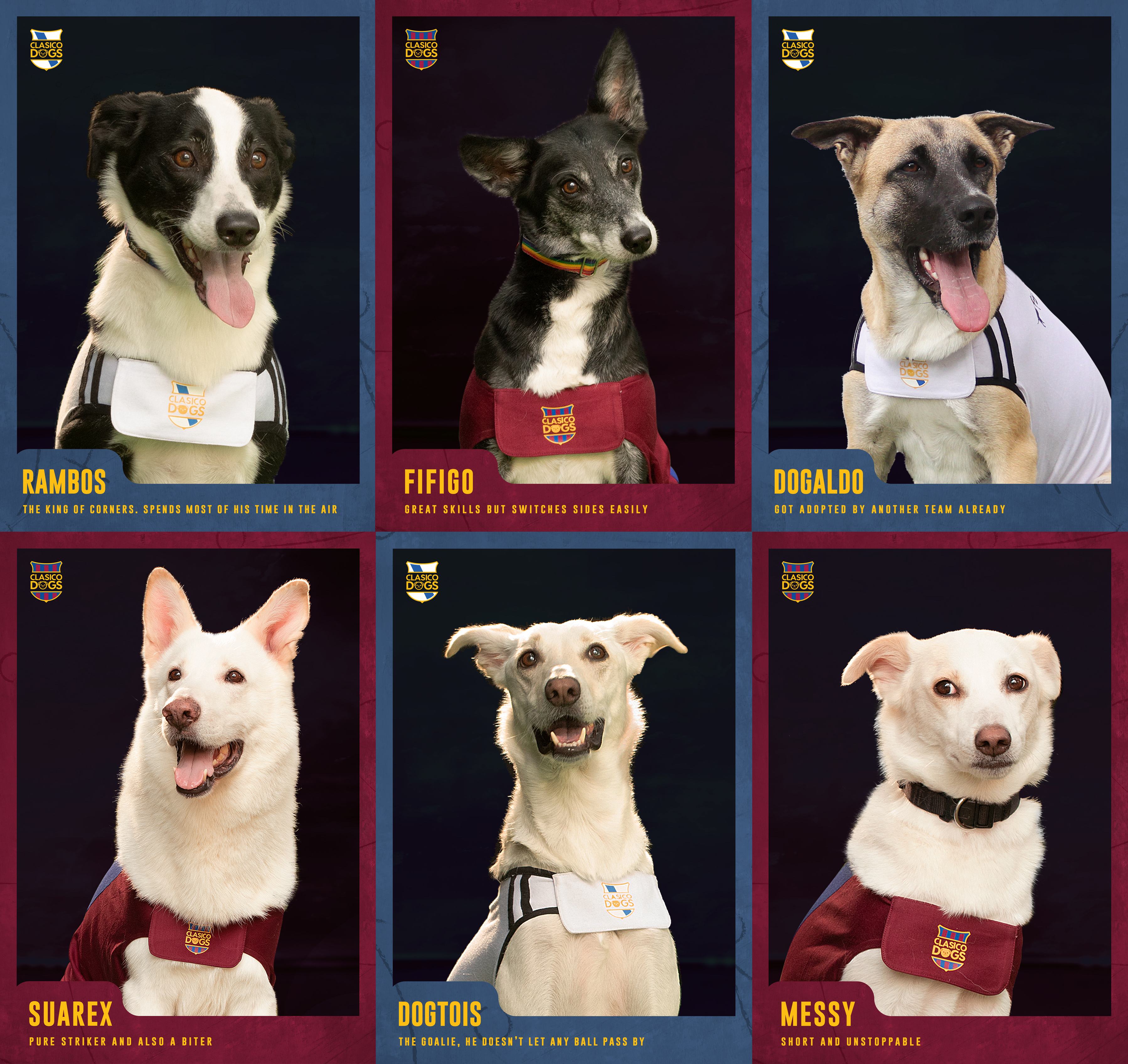 Six dogs dressed as football players